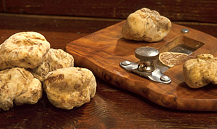 White truffle cut